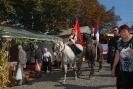 Oplenacka berba 2011